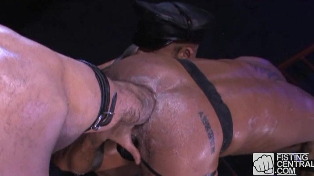 Violator and Butch Grand Fist Matthieu Paris 1