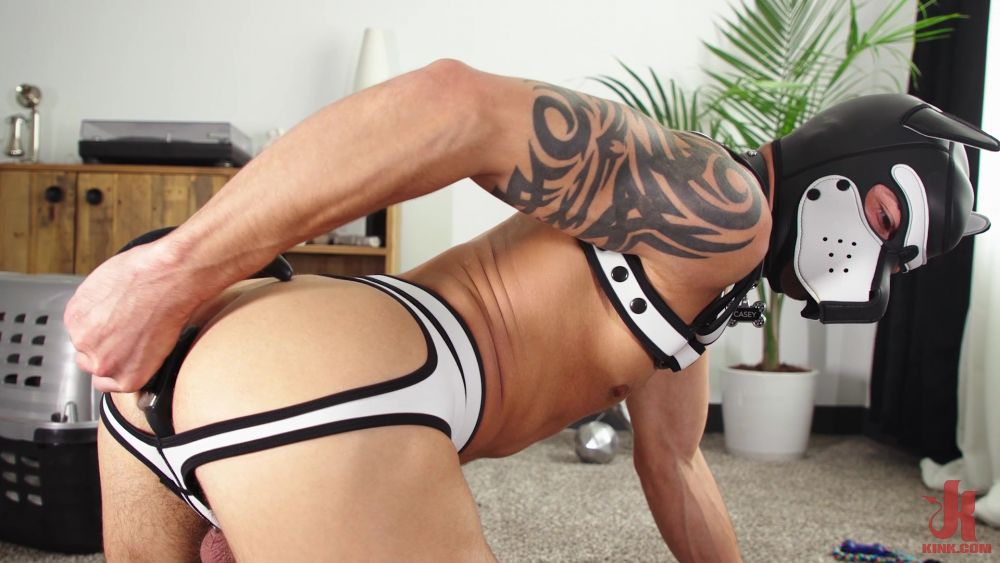 Casey Everett: Stay Home With A Big Dildo In The Ass