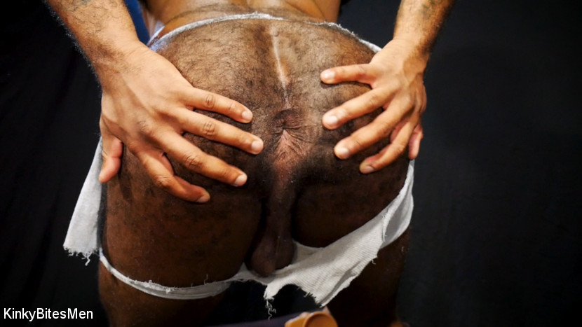 Hairy Micah Martinez Pleases Himself With Big Dildos 1